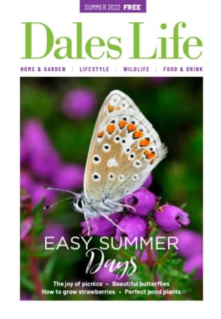 Dales Life Summer 2021 issue magazine cover – Sensational Summer